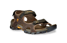Timberland Men's Trailwind Sport Sandal brown